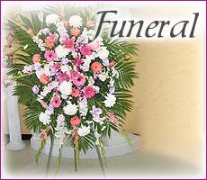 Sympathy / Funeral