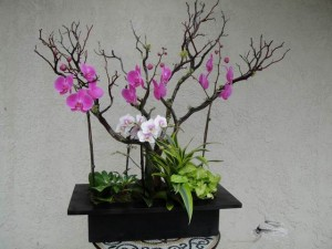 Purple Orchids with Small Light Lavender Orchids